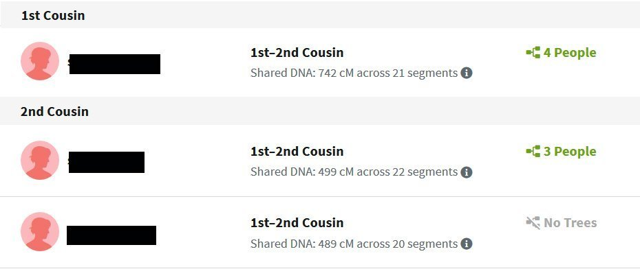 Ancestry DNA Matches Paternal Side