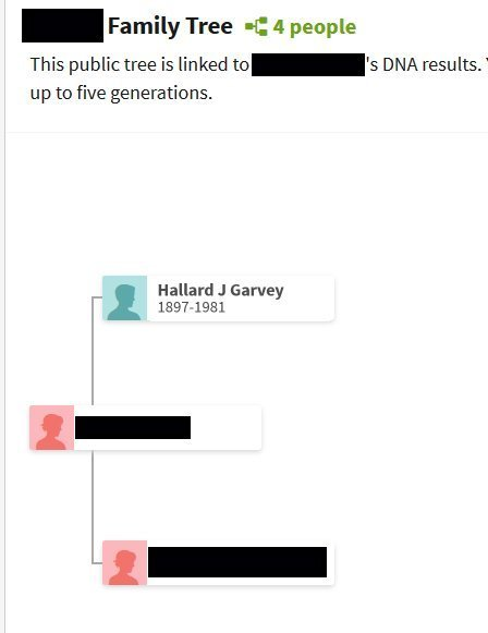 AncestryDNA match tree